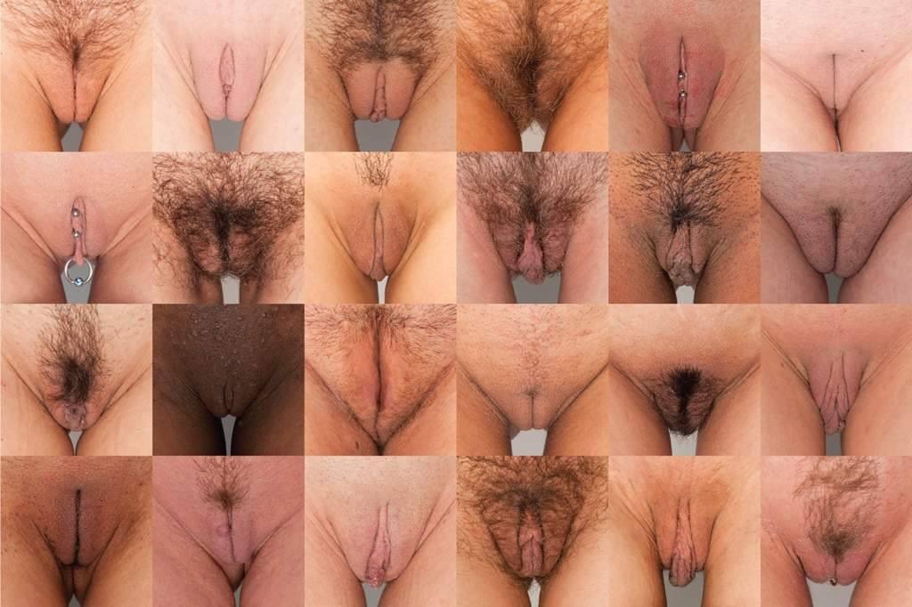 фото вагины виды