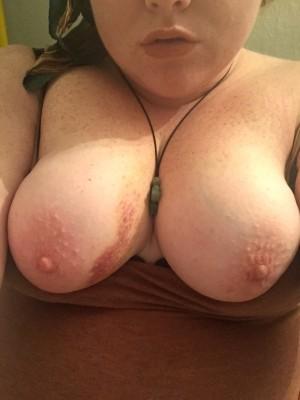 Boobies (f)