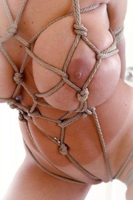 Well tied up