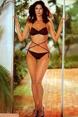 Dat iconic cool - Lynda Carter before Wonder Woman