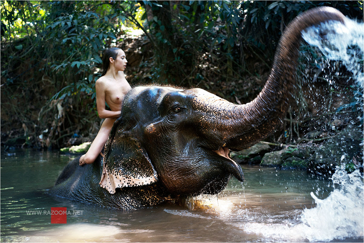 Elephant girl sexy movies pron scene