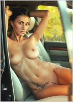 A perfect passenger