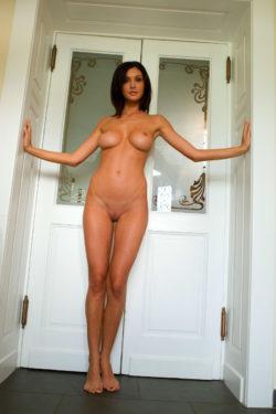 Busty Brunette At The Door