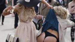 Classy Festival Sluts