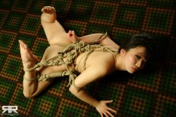 Shibari on the carpet (AIC)
