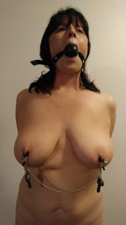 Clamps and a gag