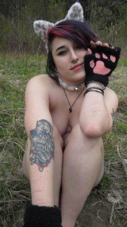 Meow;3
