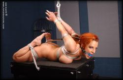 Redhead in Hooked Strappado Hogtie (AIC)