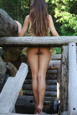 Sofi's gap