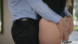 AJ Applegate fucked by her boss
