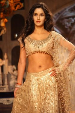 The Perfect Midriff (ft. Katrina Kaif) [PIC]