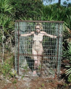 Caged outdoors. That has to be fun.