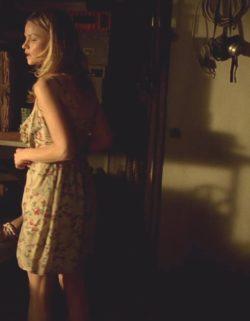 Lindsay Pulsipher - True Blood