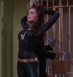 Julie Newmar plot in the original Batman TV series