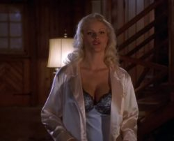 Anna Nicole Smith - Naked Gun 33 1/3