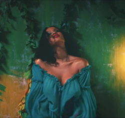 I watch Rihanna's music videos for the artistic value