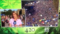 420 news coverage
