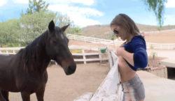 flashing a horse