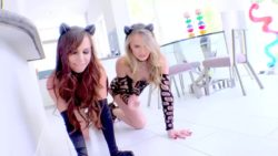 Aidra Fox & Jillian Janson | Pretty Anal Kitties