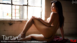 Tartan two – Angelina