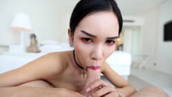21yo busty Thai shemale sucks off vacationers white cock and balls